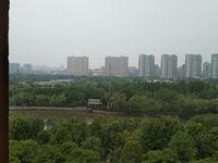 南盐中 锦盛豪庭 小面积住宅 出售 低于周边市场价